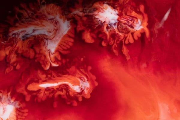 身体の中をめぐって酸素と栄養素を全身に届ける血液のイメージ