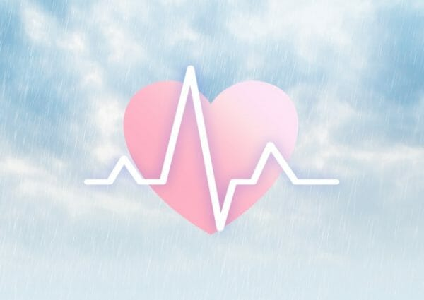 貧血にならないために臓器に血液を回そうとする心臓のイメージ