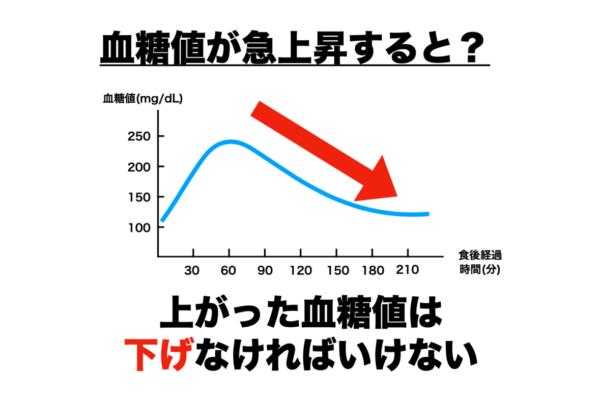 筋肉がつかないのは血糖値の急降下が原因だと分かりやすく説明したグラフ