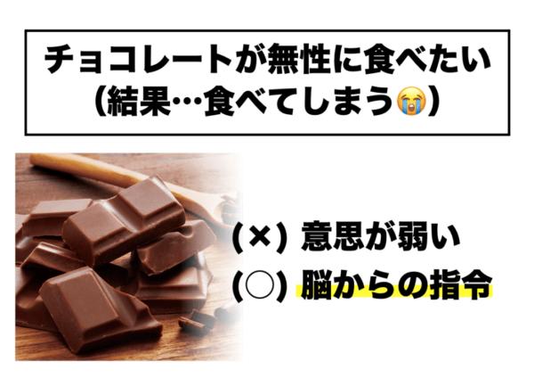 チョコレートが無性に食べたくなってしまうのは意思が弱いからではなくて身体からのサインに従っているだけだということを示す図