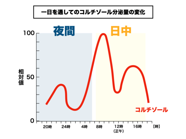 朝起きられない原因であるコルチゾール分泌量をグラフで表した画像