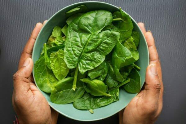 鉄分がたくさん含まれている食材の代表であるほうれん草のイメージ