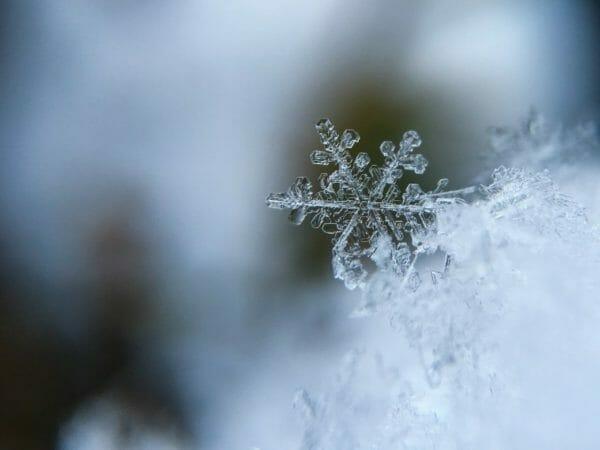 刺激が多い季節である冬のイメージ