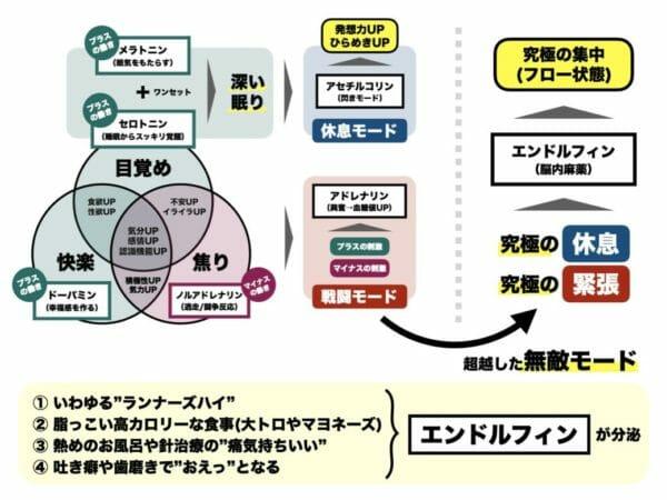 エンドルフィンという脳内物質の働きを簡単に説明した図