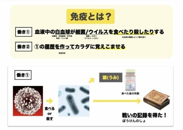 科学的な免疫の働きについて詳しく説明する図