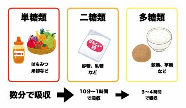 担当室・二糖質・多糖質のカラダへの吸収率を説明している画像