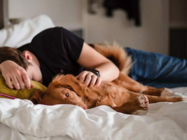 カフェイン断ちの禁断症状で頭が働かず昼寝をする男性のイメージ