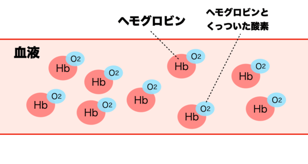 血中酸素濃度は、そのヘモグロビンと酸素の結合率ということを説明したイメージ